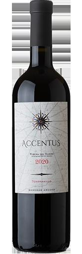 Accentus 2020