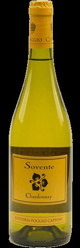 Sovente - Chardonnay Bianco Toscana IGT 2019