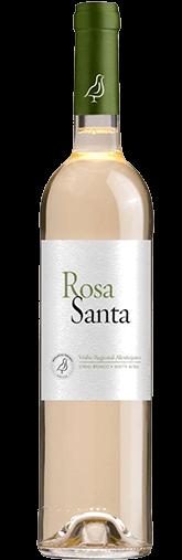 Rosa Santa White 2017
