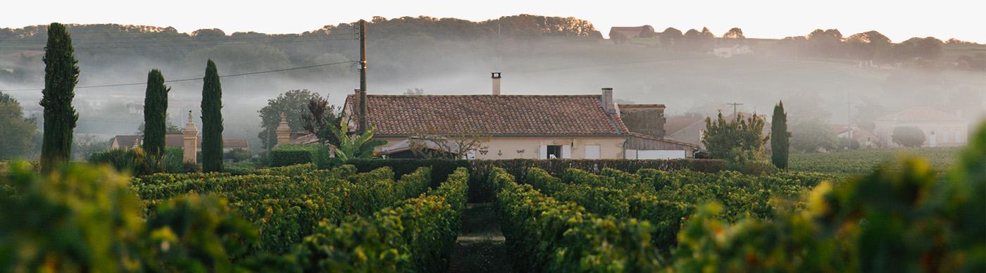 wine-producer